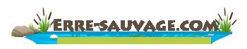 erre-sauvage.com